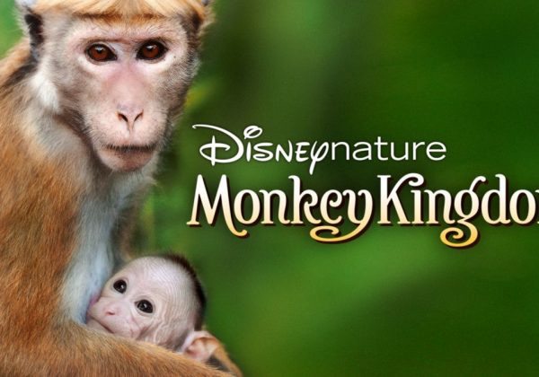 Disney's Monkey Kingdom